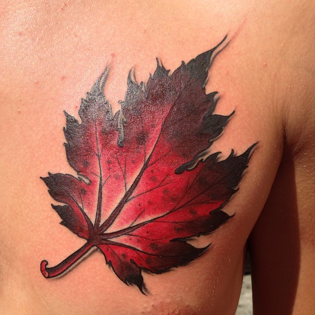 walk in maple leaf tattoo zoo
