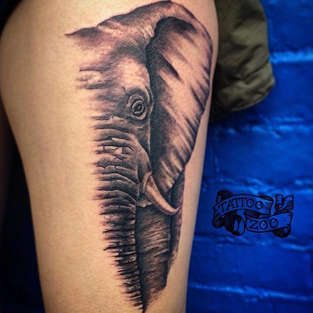 Elephant Tattoo Zoo