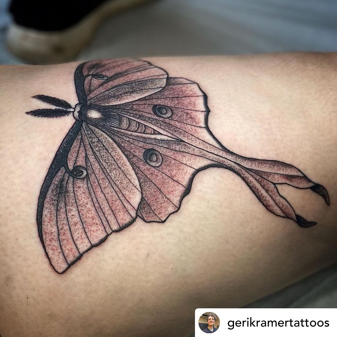 • @gerikramertattoos I read a story when I was younger that was about luna moths (I feel like Henry Huggins was involved but I can't be sure) and I was POSITIVE that they were #1. Made up, and #2. A misspelling of Lunar Moths, because they came from space.I was such a weird little kid.🥰🥰🥰And if you're looking to get tattooed by me outside of cancellations, I'll be booking for the fall after August 1st. Y'all have truly overwhelmed me with projects, and I want to make sure I have the space and energy to make the best tattoo I can! Thank you for your continued trust. 🤩........#TransTattooer #TransTattooArtist #Transgender #Trans #QueerTattooer #TransWoman #QueerTattooArtist #QueerArtist #qttr #VictoriaTattooer #VictoriaTattooArtist#VictoriaBC #WeLoveTattooingYou #TattooZoo