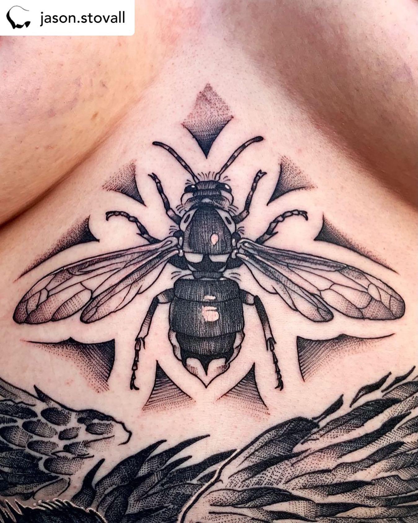 • @jason.stovall Bald-faced Hornet sternum tat. Ouch. Thanks M!!! ......# #baldfacedhornet #hornettattoo #sternumtat #stomachtattoo #wasptattoo #tattoozoo #jasonstovall